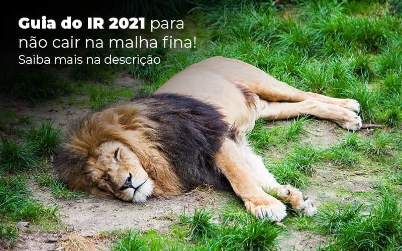 Guia Ir 2021 Para Nao Cair Na Malha Fina Saiba Mais Na Descricao Post (1) - Quero montar uma empresa - IR 2021 – o que é preciso saber sobre?