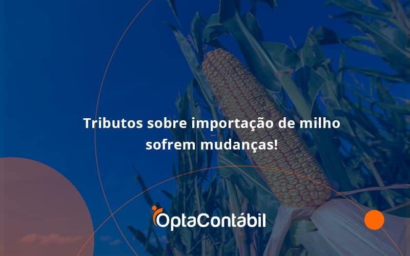 Tributos Sobre Importação De Milho Sofrem Mudanças! Opta Contabil - Contabilidade em Pinhais - PR   Opta Contábil - Tributos sobre importação de milho sofrem mudanças!
